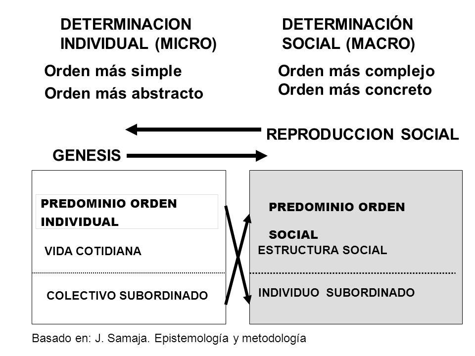 DETERMINACION INDIVIDUAL (MICRO) DETERMINACIÓN SOCIAL (MACRO)