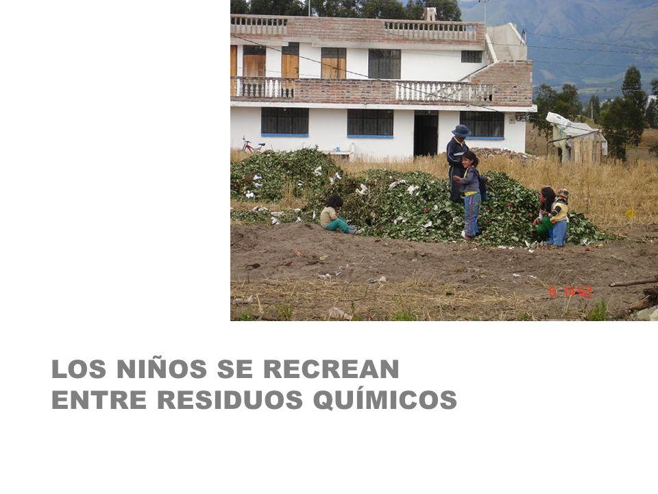 LOS NIÑOS SE RECREAN ENTRE RESIDUOS QUÍMICOS