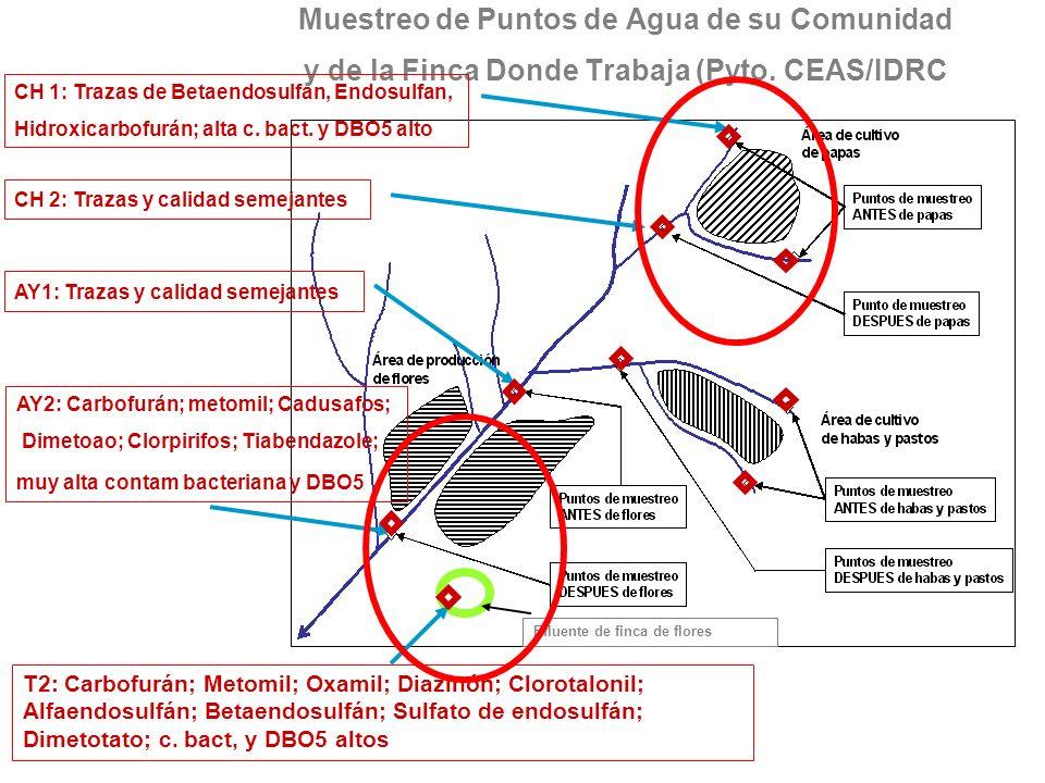Muestreo de Puntos de Agua de su Comunidad y de la Finca Donde Trabaja (Pyto. CEAS/IDRC