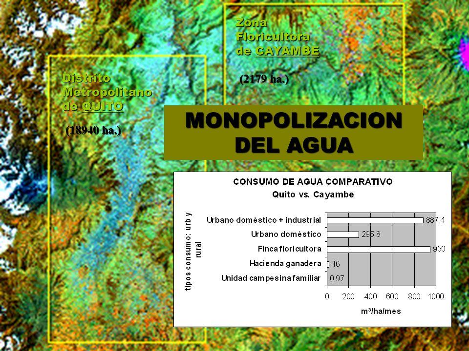MONOPOLIZACION DEL AGUA