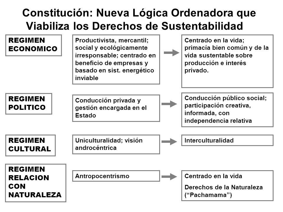 Constitución: Nueva Lógica Ordenadora que Viabiliza los Derechos de Sustentabilidad