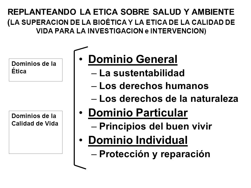 Dominio General Dominio Particular Dominio Individual