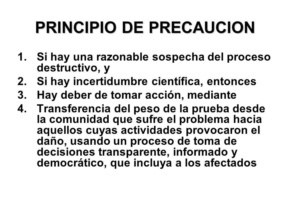 PRINCIPIO DE PRECAUCION