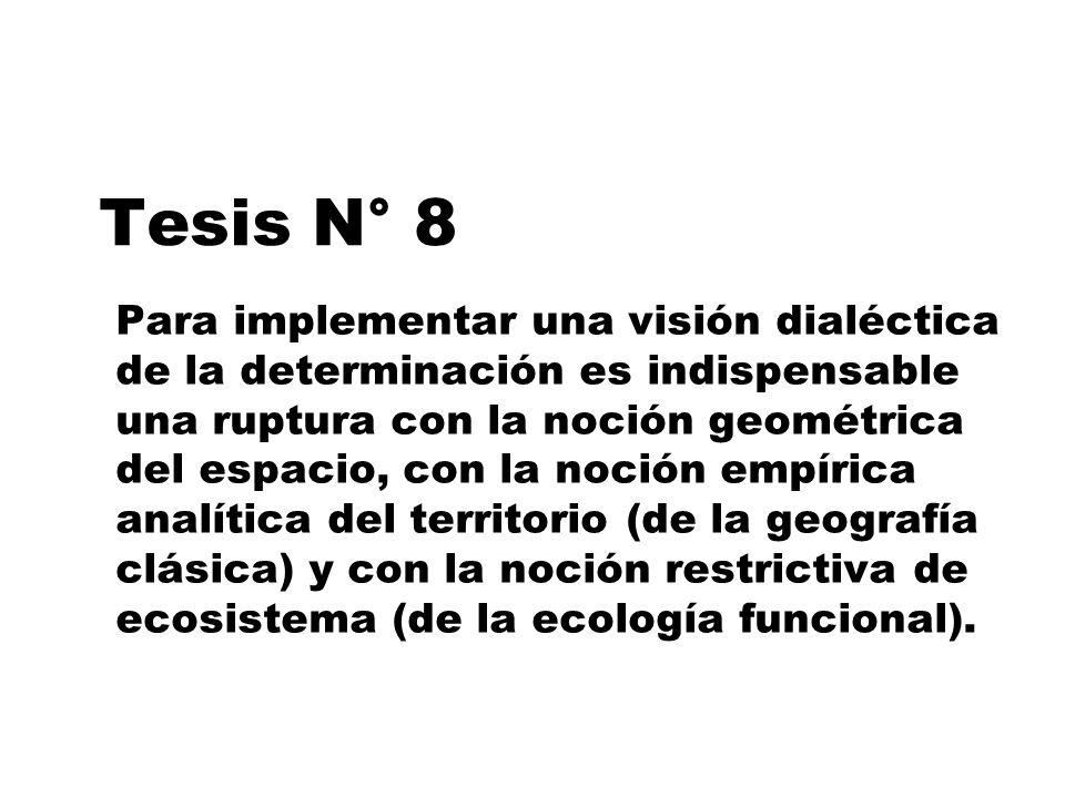 Tesis N° 8