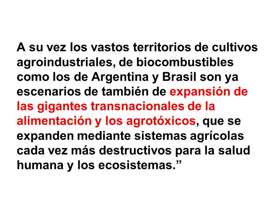 A su vez los vastos territorios de cultivos agroindustriales, de biocombustibles como los de Argentina y Brasil son ya escenarios de también de expansión de las gigantes transnacionales de la alimentación y los agrotóxicos, que se expanden mediante sistemas agrícolas cada vez más destructivos para la salud humana y los ecosistemas.