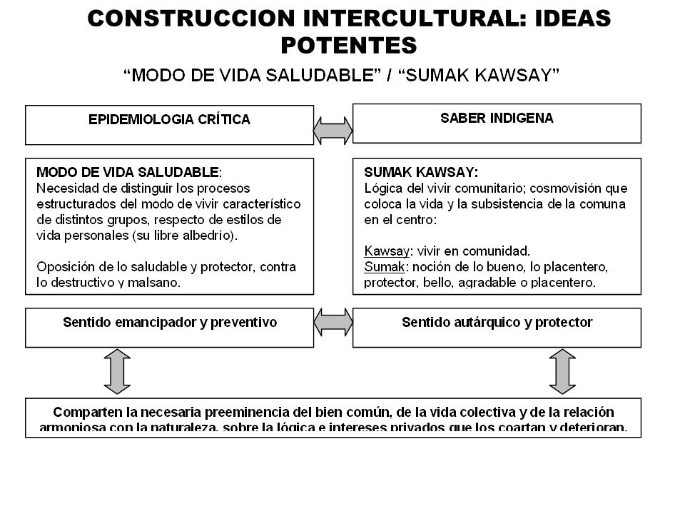 CONSTRUCCION INTERCULTURAL: IDEAS POTENTES