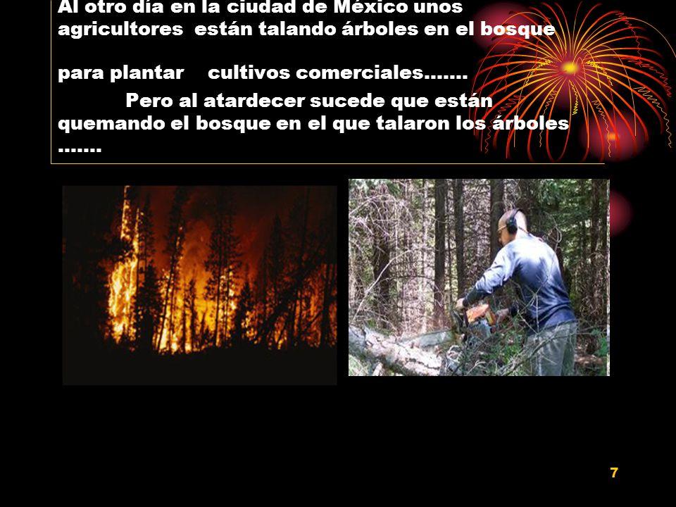 Al otro día en la ciudad de México unos agricultores están talando árboles en el bosque para plantar cultivos comerciales…….