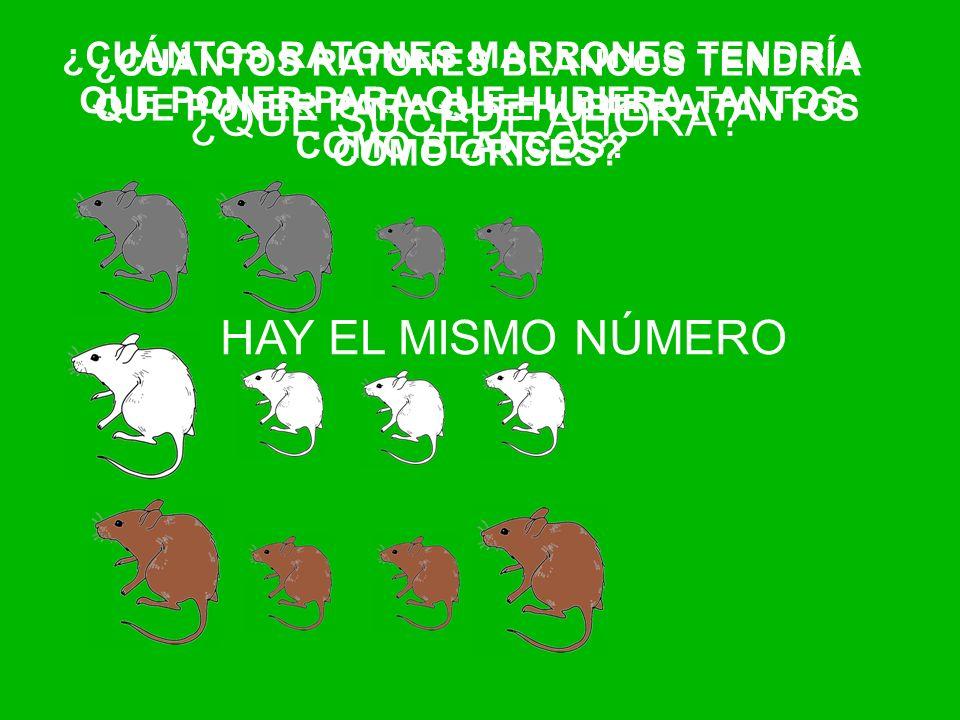 ¿QUÉ SUCEDE AHORA HAY EL MISMO NÚMERO