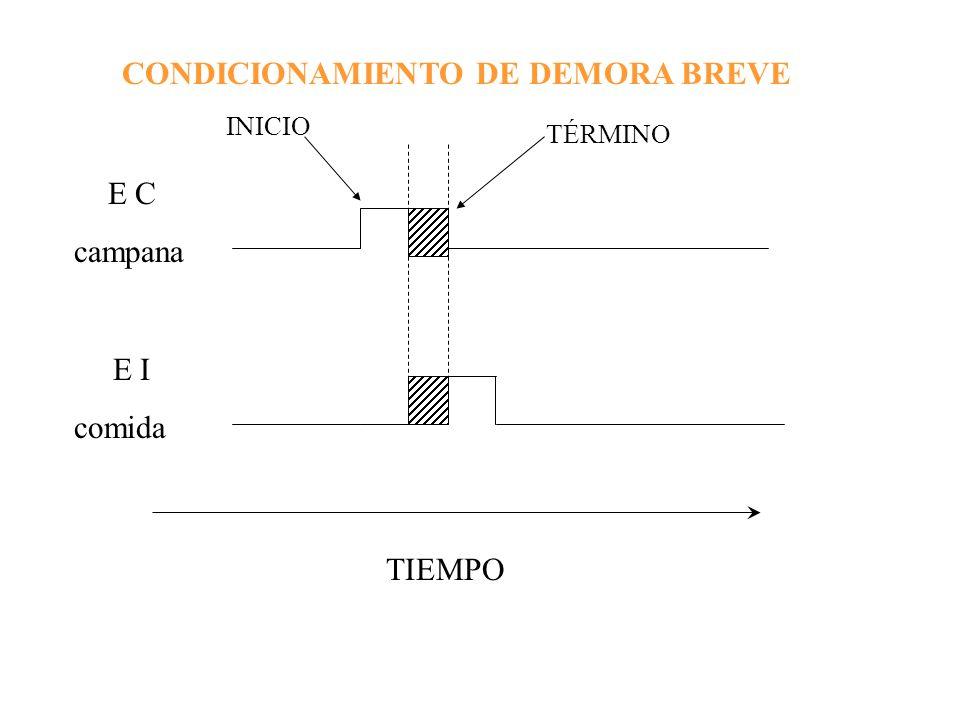 CONDICIONAMIENTO DE DEMORA BREVE