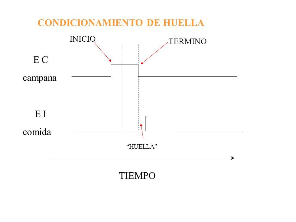 CONDICIONAMIENTO DE HUELLA