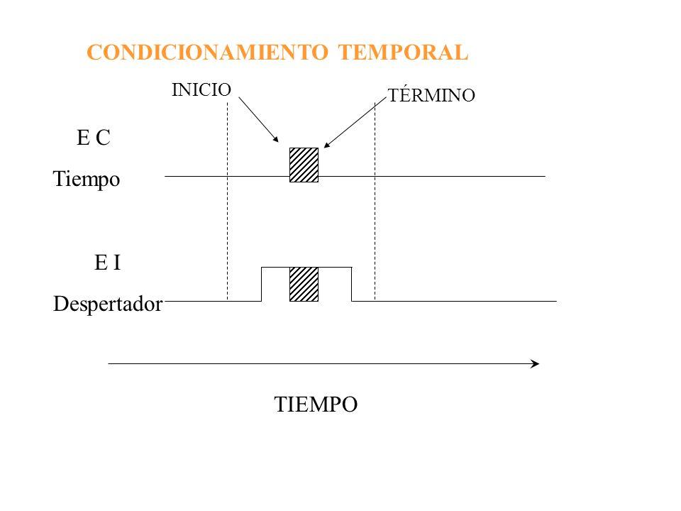 CONDICIONAMIENTO TEMPORAL