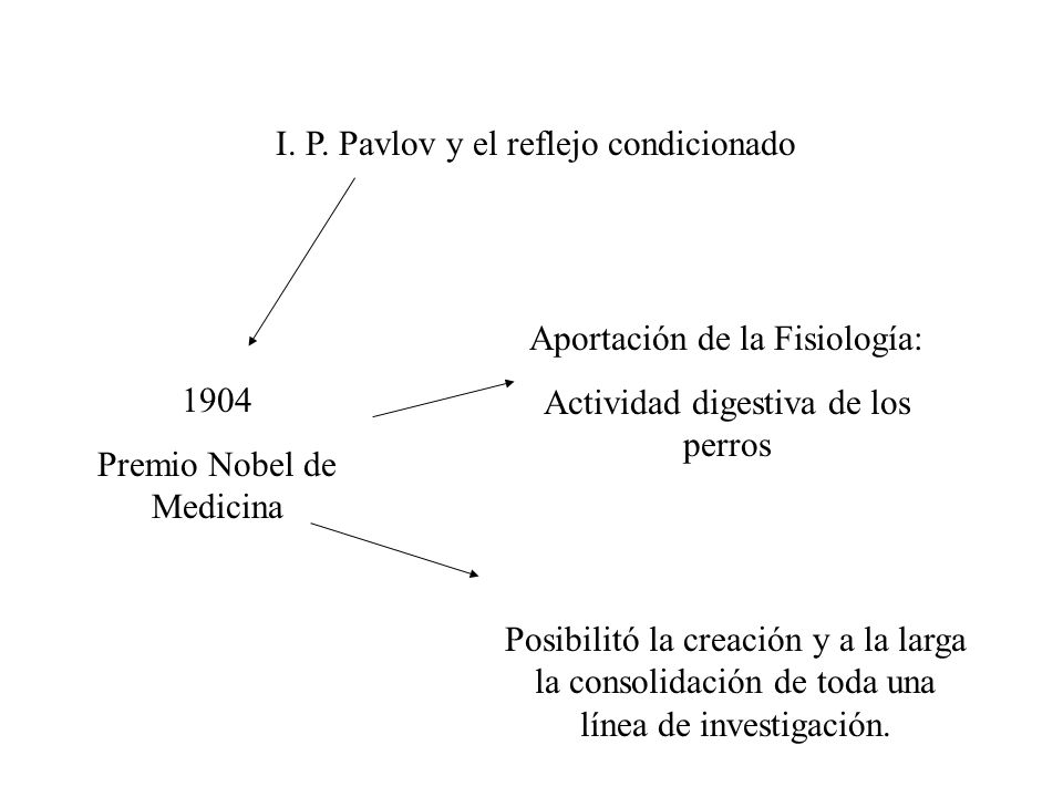 I. P. Pavlov y el reflejo condicionado
