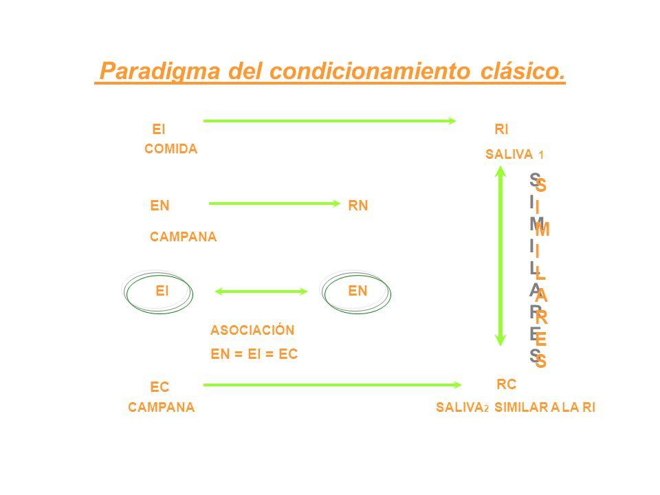 Paradigma del condicionamiento clásico. EI RI