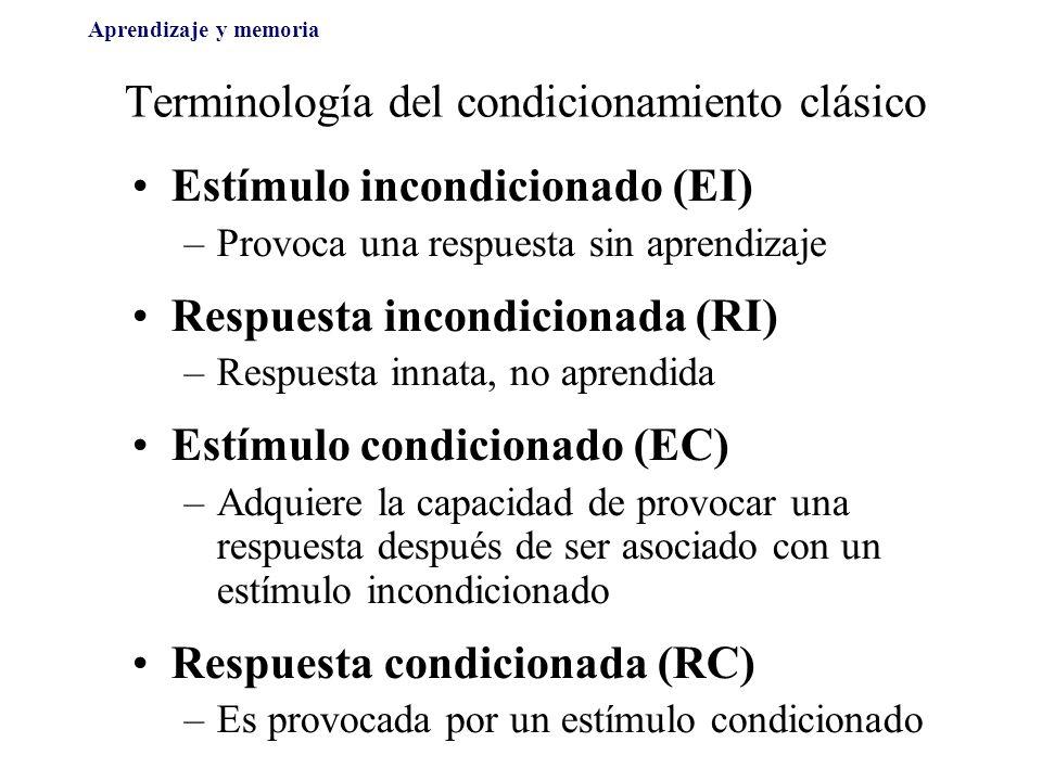 Terminología del condicionamiento clásico