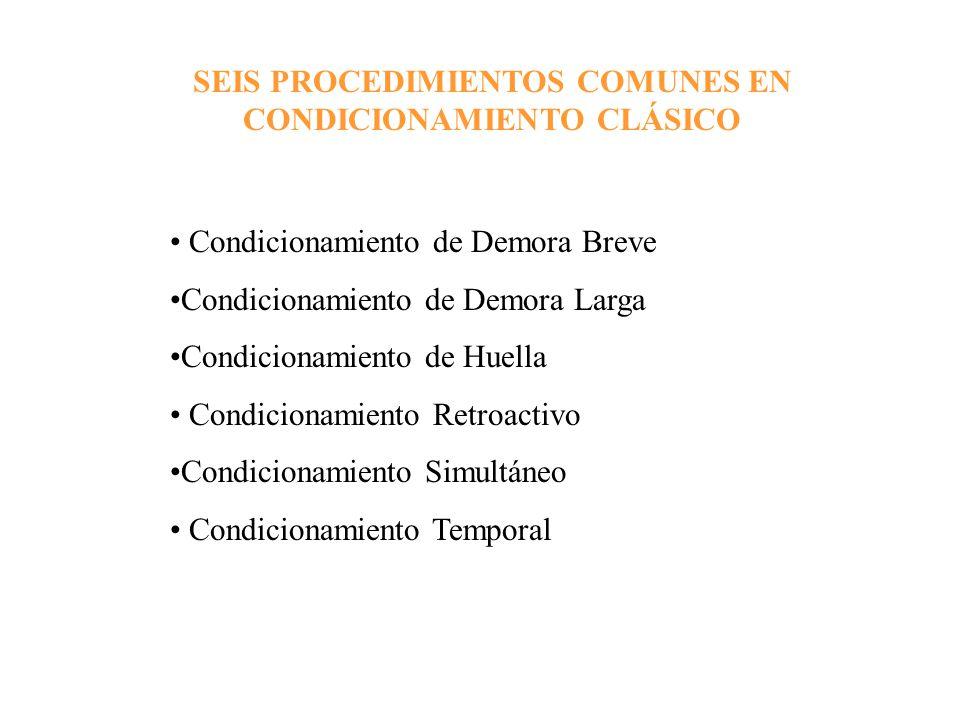 SEIS PROCEDIMIENTOS COMUNES EN CONDICIONAMIENTO CLÁSICO