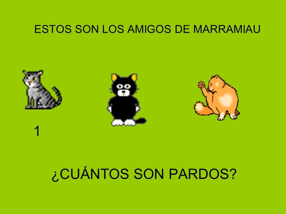 ESTOS SON LOS AMIGOS DE MARRAMIAU