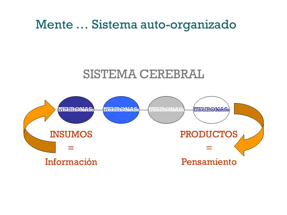 Mente … Sistema auto-organizado