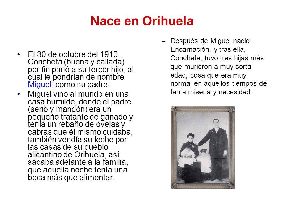 Nace en Orihuela