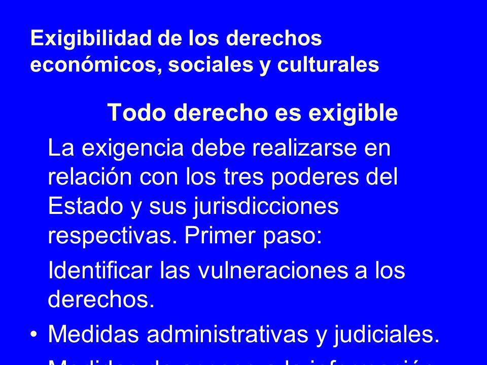 Exigibilidad de los derechos económicos, sociales y culturales