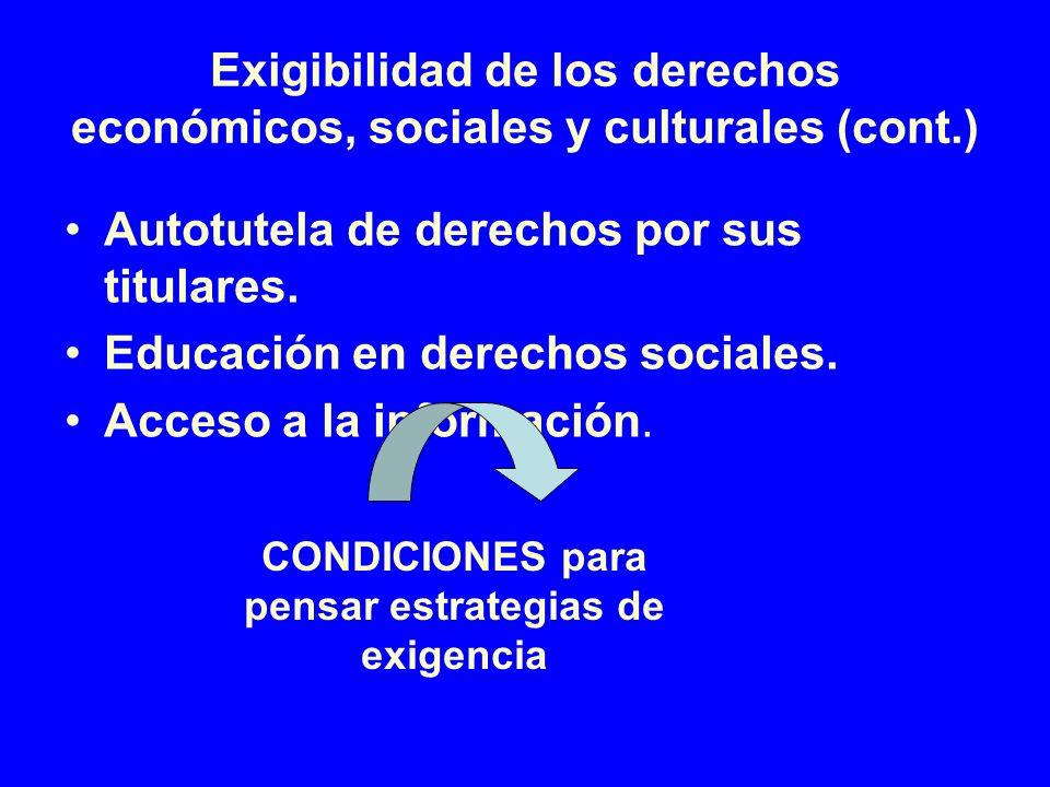Exigibilidad de los derechos económicos, sociales y culturales (cont.)