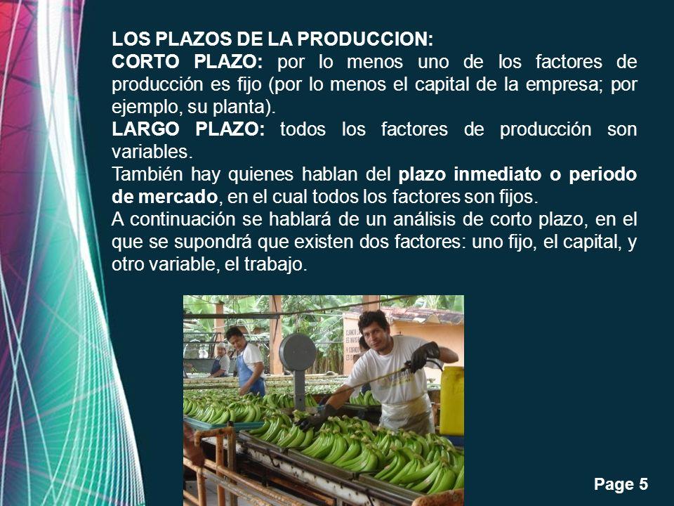 LOS PLAZOS DE LA PRODUCCION: