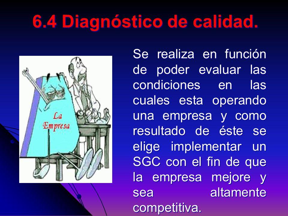 6.4 Diagnóstico de calidad.