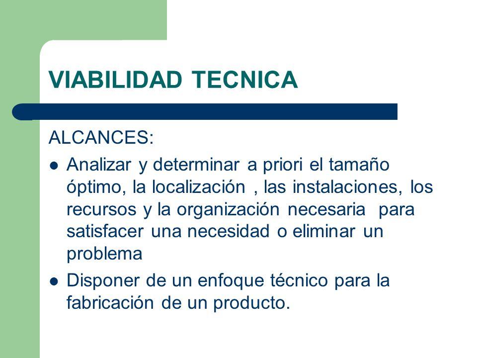 VIABILIDAD TECNICA ALCANCES:
