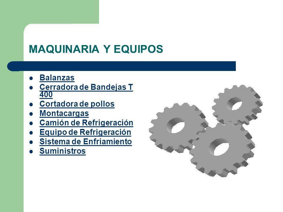 MAQUINARIA Y EQUIPOS Balanzas Cerradora de Bandejas T 400
