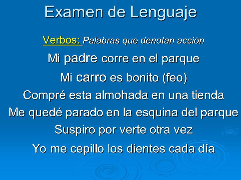 Examen de Lenguaje Mi padre corre en el parque