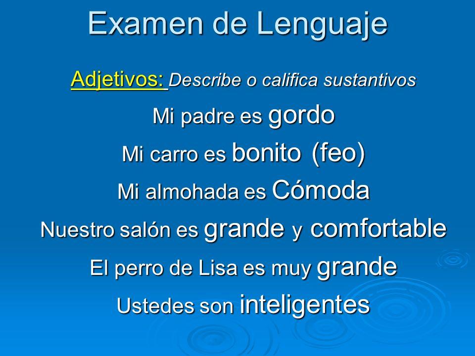 Examen de Lenguaje Adjetivos: Describe o califica sustantivos