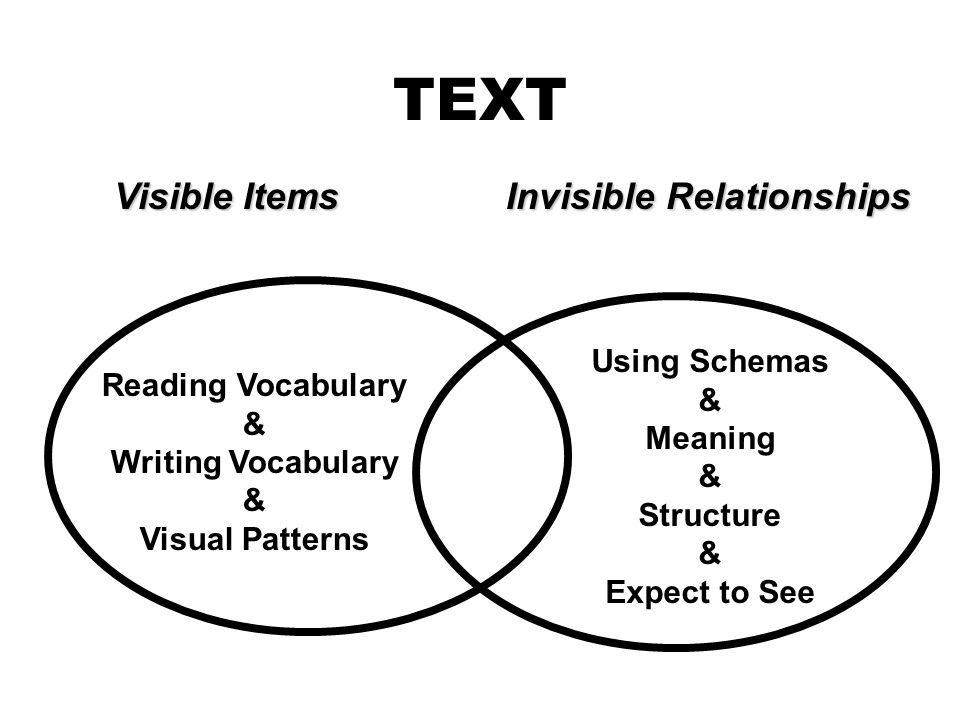 TEXT Visible Items Invisible Relationships Using Schemas &