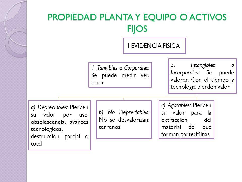 PROPIEDAD PLANTA Y EQUIPO O ACTIVOS FIJOS