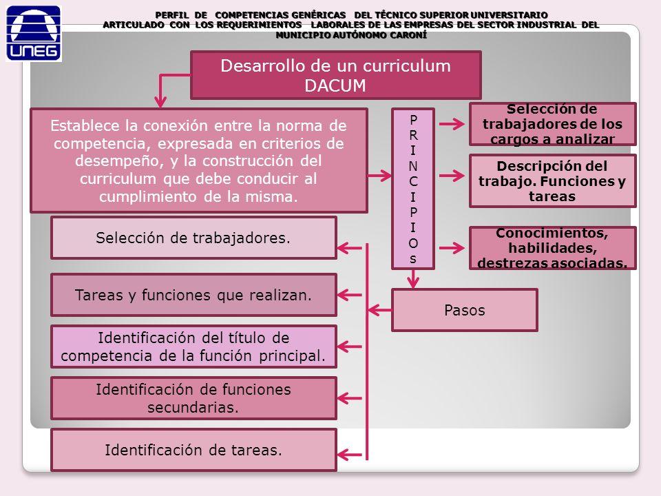 Desarrollo de un curriculum DACUM