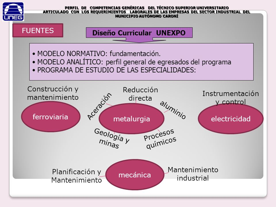 Diseño Curricular UNEXPO