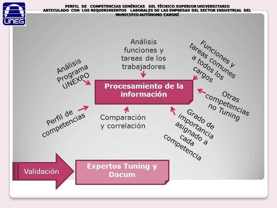 Procesamiento de la información Expertos Tuning y Dacum