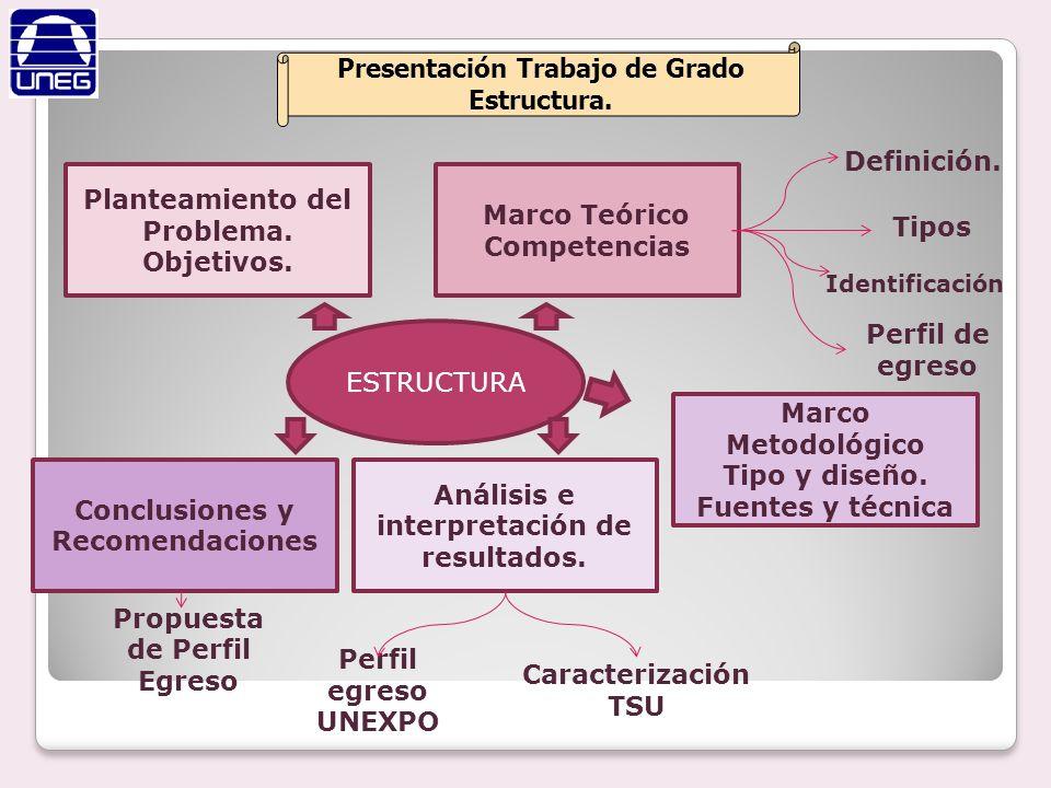 Presentación Trabajo de Grado Estructura.