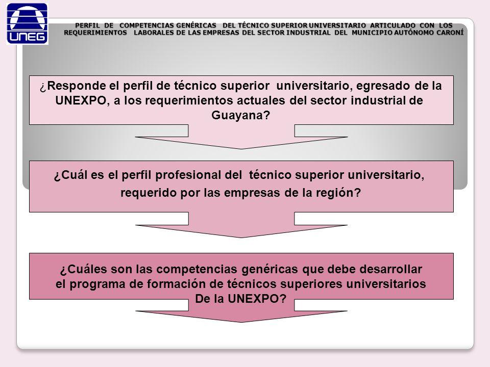 ¿Responde el perfil de técnico superior universitario, egresado de la