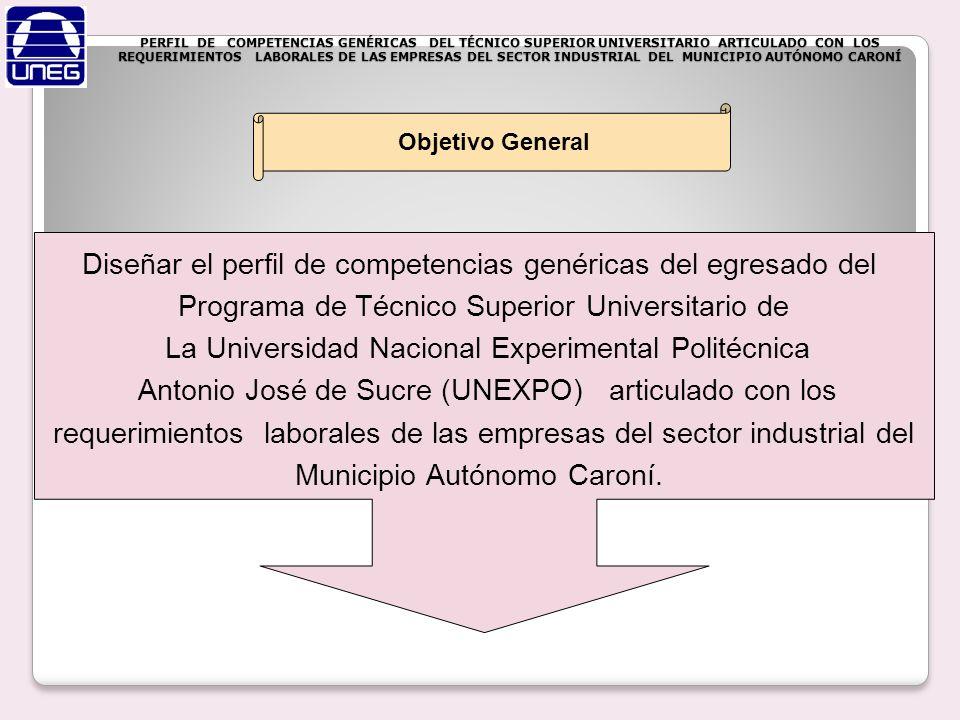 Diseñar el perfil de competencias genéricas del egresado del