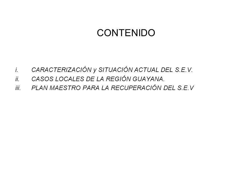 CONTENIDO CARACTERIZACIÓN y SITUACIÓN ACTUAL DEL S.E.V.