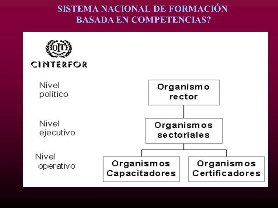 SISTEMA NACIONAL DE FORMACIÓN BASADA EN COMPETENCIAS