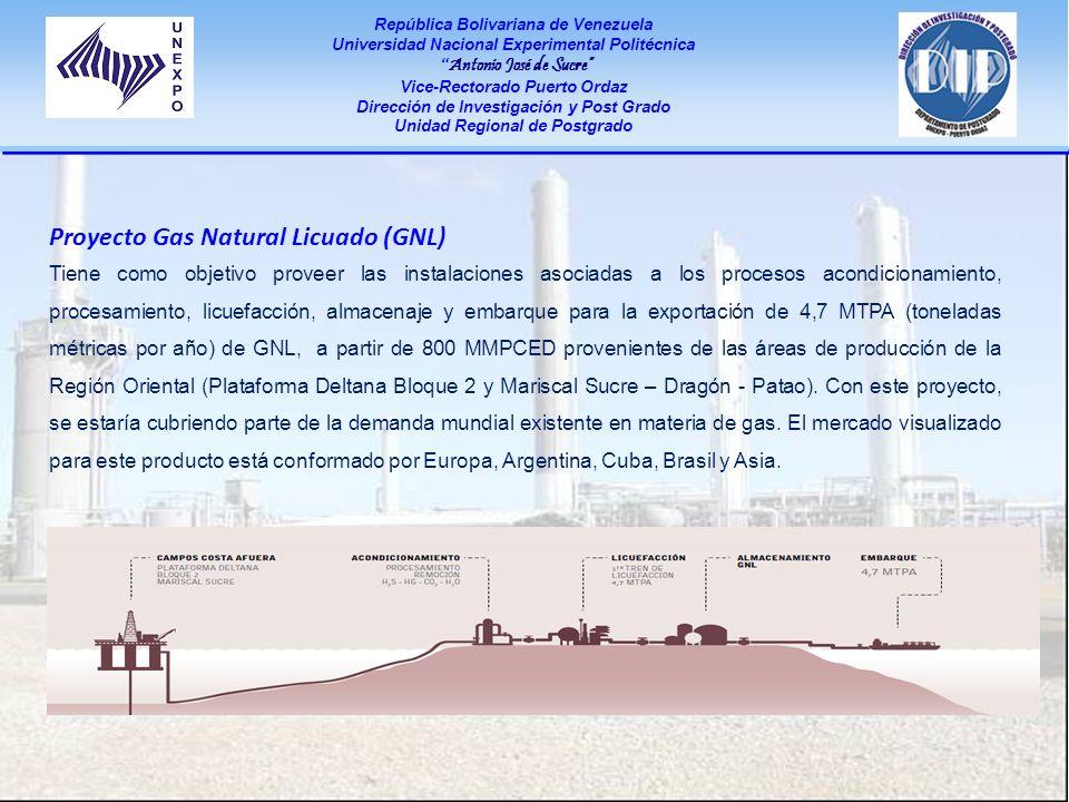 Proyecto Gas Natural Licuado (GNL)