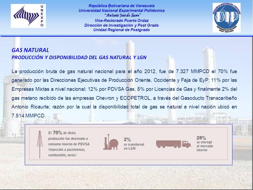 Gas Natural Producción y disponibilidad del Gas Natural y LGN