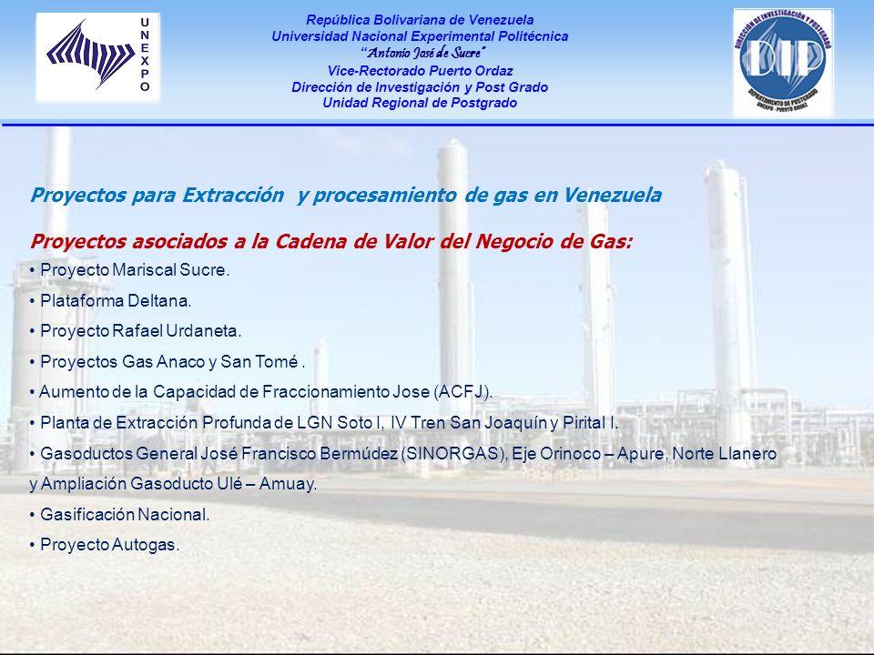 Proyectos para Extracción y procesamiento de gas en Venezuela