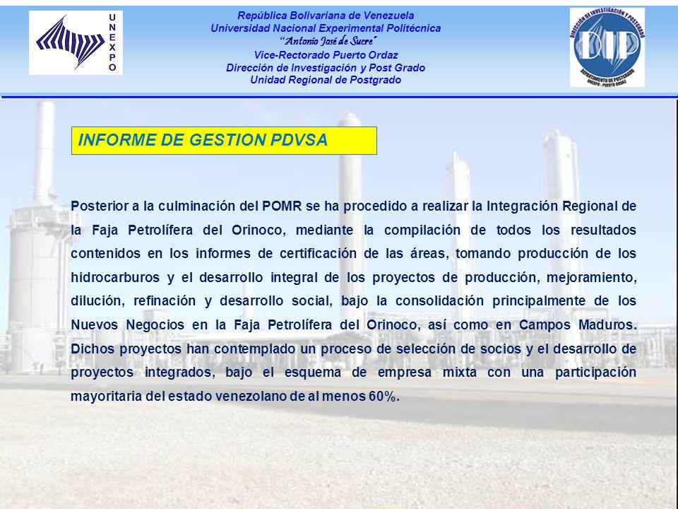 INFORME DE GESTION PDVSA