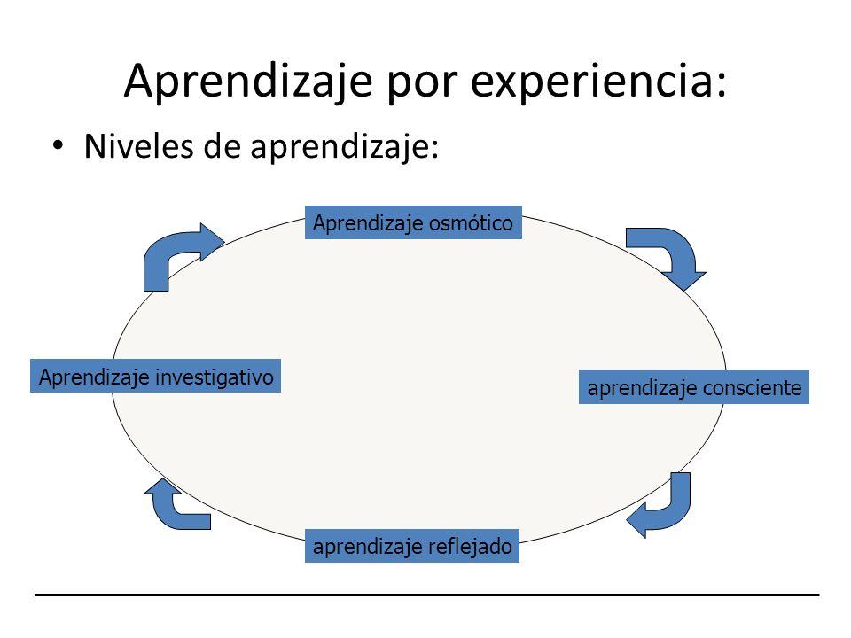 Aprendizaje por experiencia:
