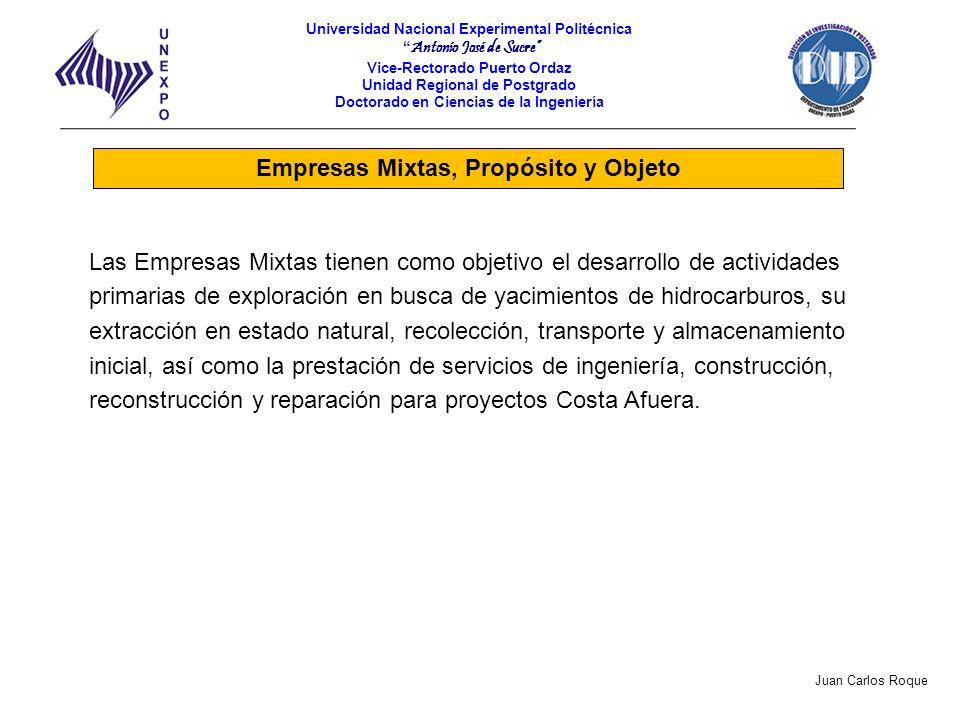Empresas Mixtas, Propósito y Objeto