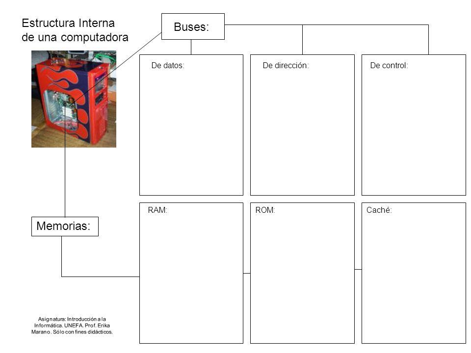 Estructura Interna de una computadora Buses: