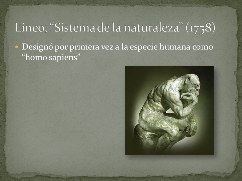 Lineo, Sistema de la naturaleza (1758)