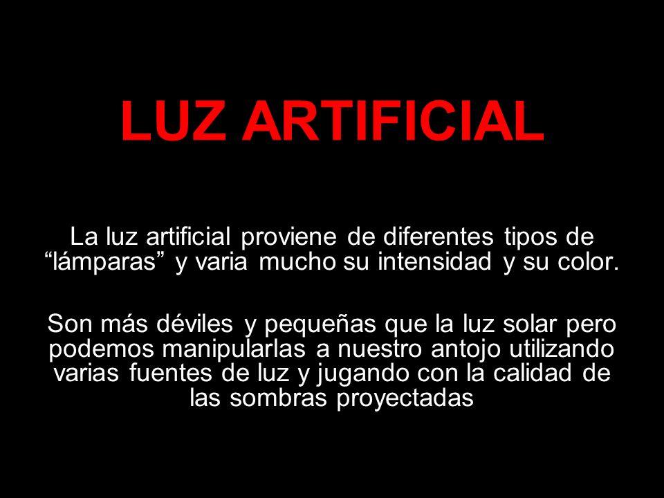 LUZ ARTIFICIAL La luz artificial proviene de diferentes tipos de lámparas y varia mucho su intensidad y su color.