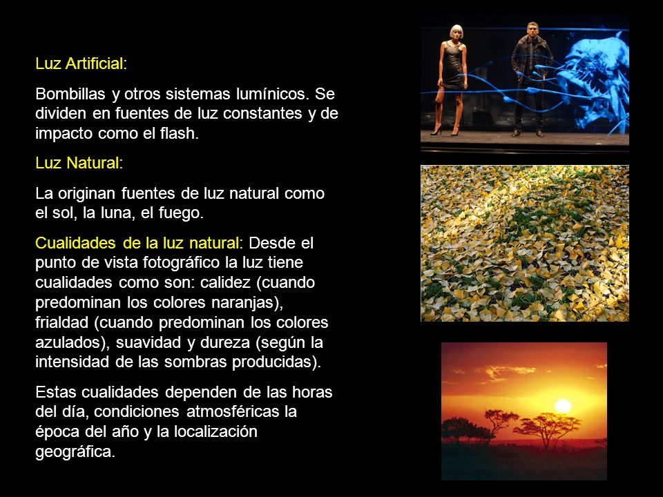 Tipos de iluminaci n ppt video online descargar - Bombillas luz natural ...